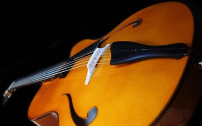 Archtop 17′